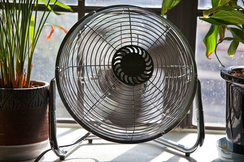 Types Of Fans For Your Home Amp Workplace The Ultimate Guide